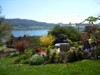 Privater Sitzplatz mit Liegestühle für die Gäste - Bild 2: Traumhafte Bodensee Ferienwohnung - Wilhelmina Hangarter